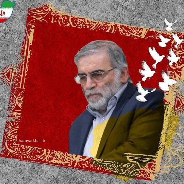 عکس شهید محسن فخری زاده برای پروفایل (7).jpg